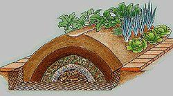 Высокая компостная гряда