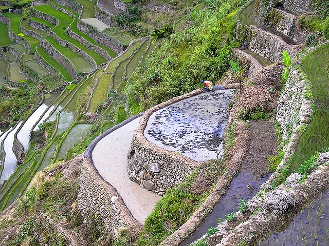 Banaue rice terraces. Terrazas de arroz de Banaue. by Jon Díez Supat, via Flickr