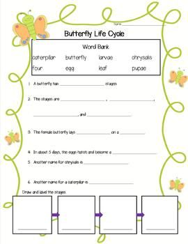 This printable can be used as a test, review or introducing new facts about a butterfly' life cycle....