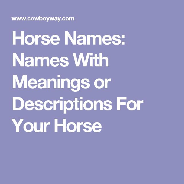Horse Names: Names With Meanings or Descriptions For Your Horse