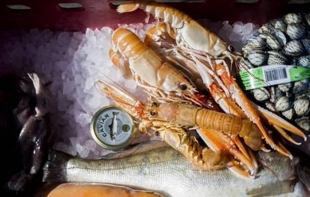 ALSIDIGT. Vi har masser af spændende fisk og skaldyr i de danske farvande. Men vi spiser det ikke selv. - Foto: Simon Fals