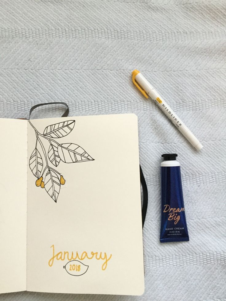 Cover Page Idea #bulletjournal #January #2018