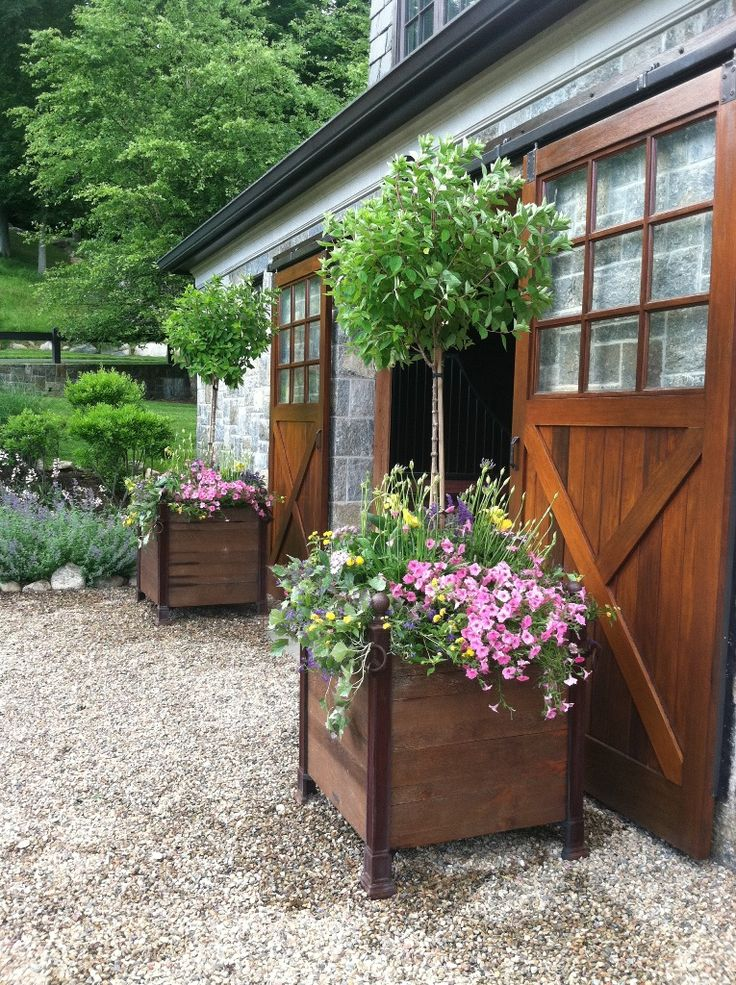 Versailles planters with an early summer planting of petunia, agapanthus and hydrangea topiary. Cording Landscape Design, NJ #planters #stables #landscape