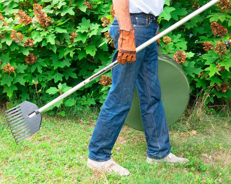 If you're looking for a great gift for a yard perfectionist, look no further. The Shrub Rake reaches leaves and debris in tight spaces all over the yard. Plus it's lightweight and durable to stand up to hard work.
