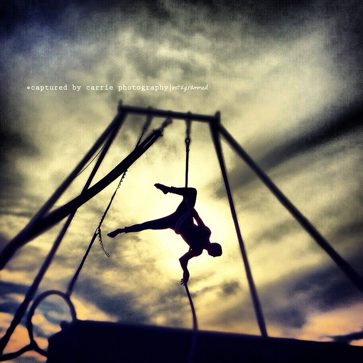 ~ Sunset Acrobatics ~  Image by © Captured By Carrie Photography  http://www.facebook.com/CapturedByCarriePhotographyCreative Bugs, Fab Aerial, Photography Photos, Carrie Photography, Sunsets Acrobatic, Movie Favorite