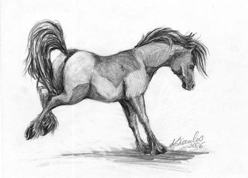 klaudusia87 - Rysunki koni | Fotosik.pl