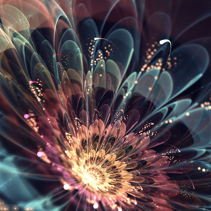 3 - GORGEOUS FRACTAL-MADE FLOWERS    Fractal art isn't drawn or captured, but rather programmed. The visualization of complex equations.Italy-born Silvia Cordedda has only been at it since January 2012, but clearly has the touch.