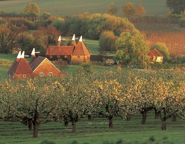 Visit Kent - Oasts in Autumn