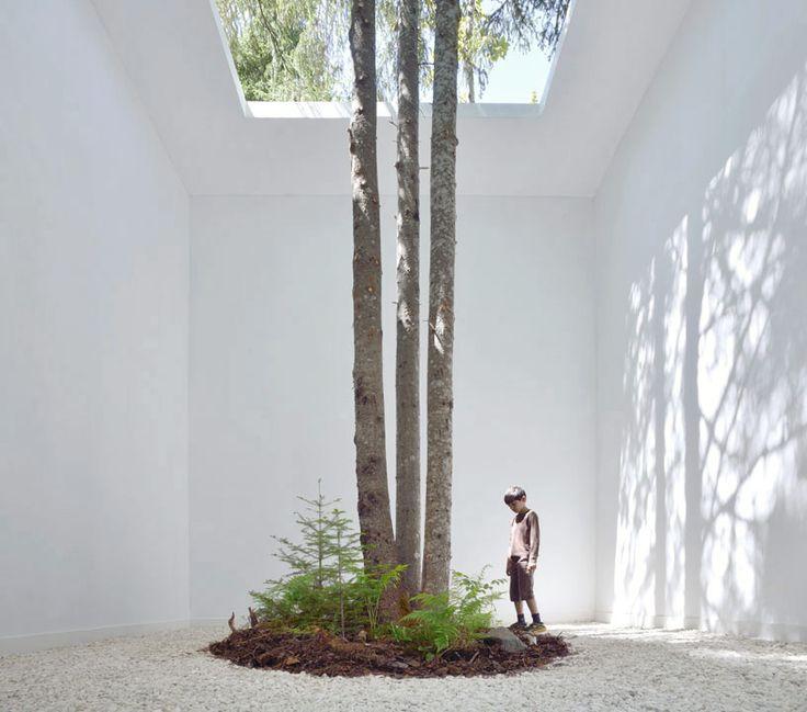 Courtesy of nature, grand-métis, quebec, 2013 http://inhabitat.com/courtesy-of-nature-museum-like-installation-frames-nature-as-art/