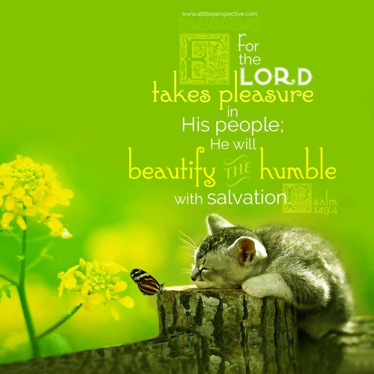 For the LORD takes pleasure in His people; He will beautify the humble with salvation. Psa 149:4. <3