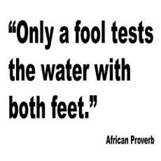 african proverb - Only a fool tests the water with both feet.