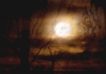 Kim V. Goldsmith, Crepuscule, digital photograph