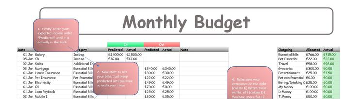 2017 Monthly Budget Planner in Excel format (UK & US versions included) by TDPrintables on Etsy