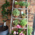 Recuperare una vecchia scala per decorare in giardino! 20 idee a cui ispirarsi... Una vecchia scala per decorarein giardino. Ecco per voi oggi una selezione di 20 idee creative per decorare il vostro giardino con una vecchia scala. Lasciatevi ispirare da...
