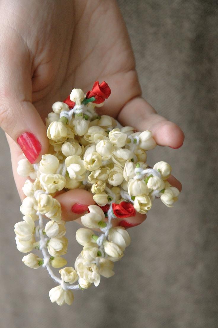 52 best jasmine images on pinterest jasmine tea jasmine and kitchen jasmine flowers braided for hair adornment dhlflorist Gallery