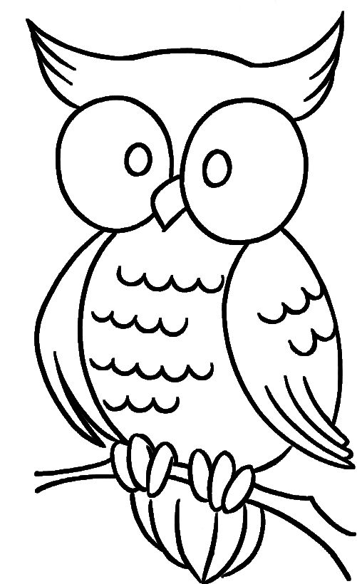Cute Owl With Bulging Eyes Coloring Pages Owl Coloring