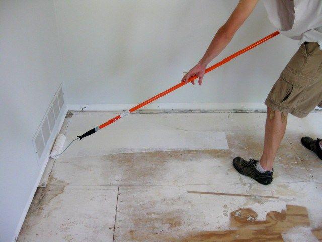 eliminating cat urine odor urine odor cat urine hardwood floor furry