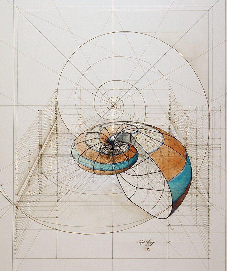 Rafael Araujo. La proporción aúrea, libro para colorear