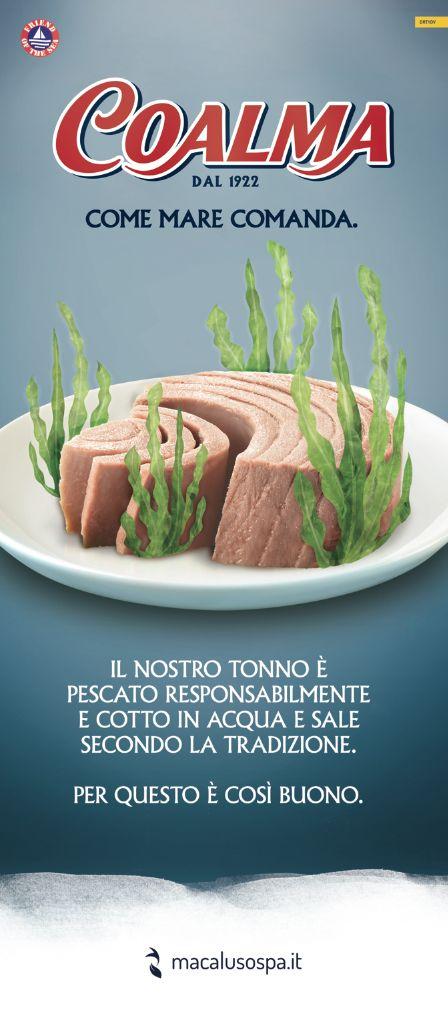 The best solid tuna! Coalma l'Autentico