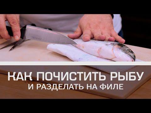 Как почистить рыбу и разделать на филе [Мужская кулинария] - YouTube
