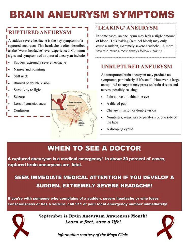 241 best brain aneurysms & brain info images on pinterest   brain, Human Body