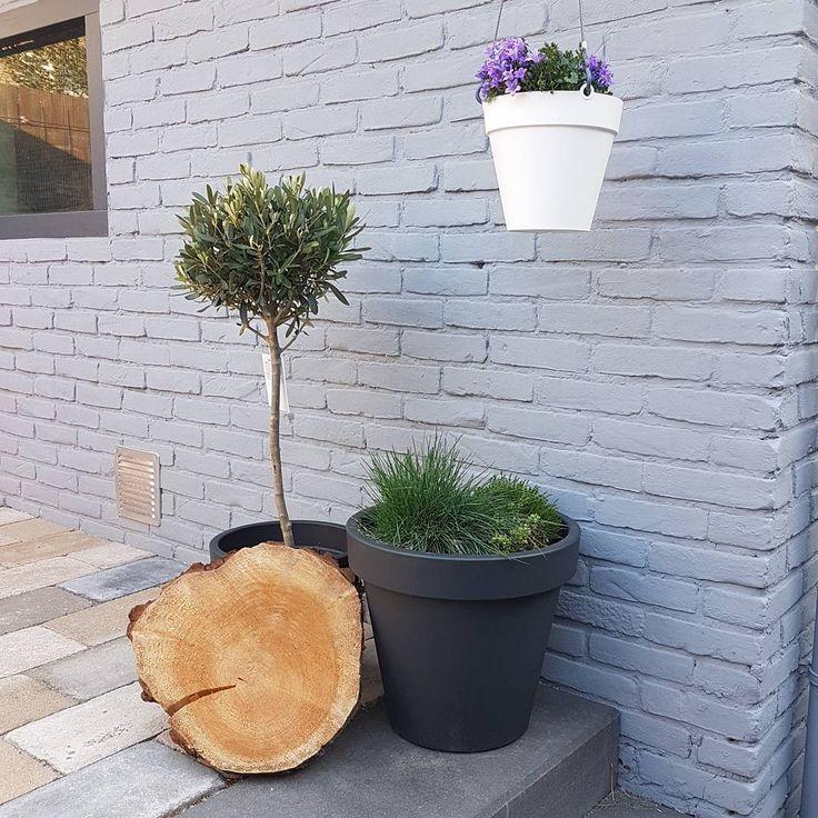 17 beste idee n over tuin meubelen op pinterest tuinmeubilair achtertuin meubels en zwembad - Zwembad betegeld grijs ...