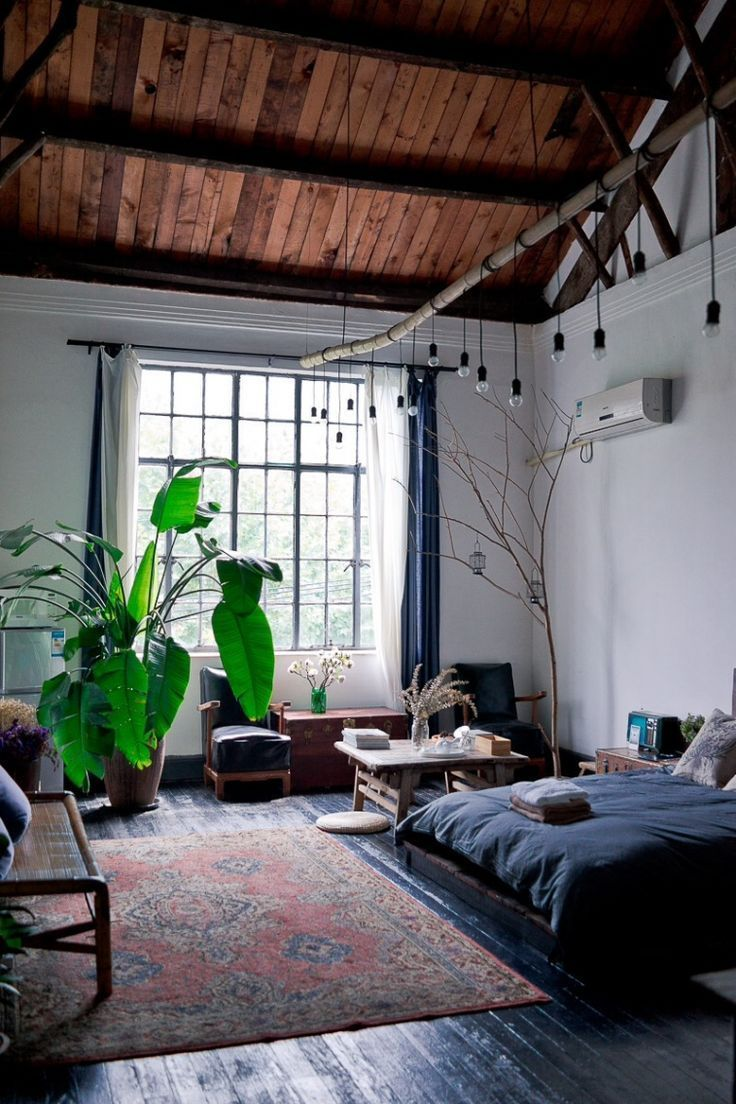 Navy blue painted wood floor + matching bedspread | Natural light, oriental rug + bright green leafy indoor plant