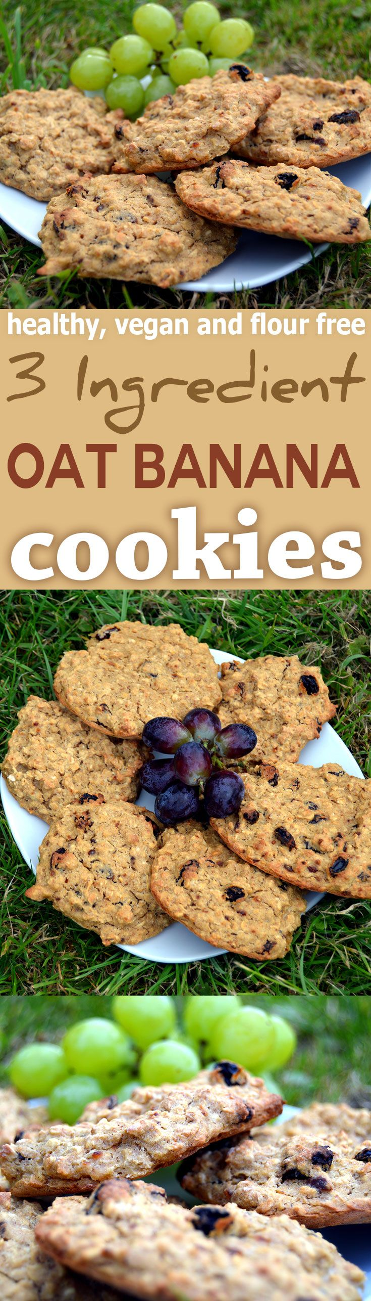 hese raisin banana oat biscuits are simple to make, contain no flour, are sweetened with just bananas, take a few mins to make via @nestandglow