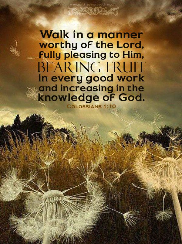 Walk in a manner worthy of the Lord, fully pleasing to Him, bearing fruit in every good work and increasing in the knowledge of God. Col 1:10 <3