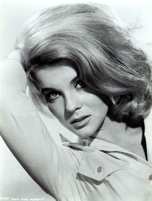 ann margret the swinger album cover