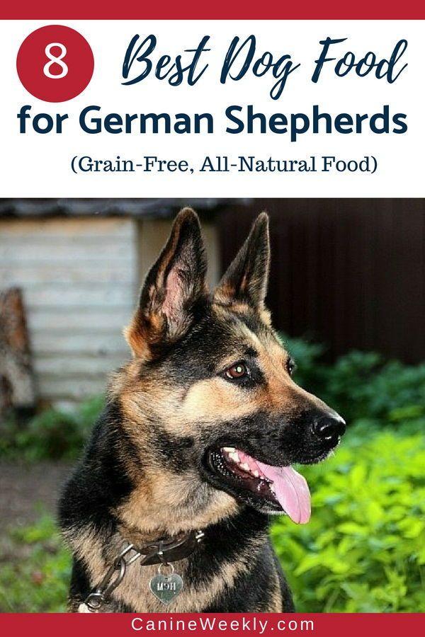 8 Best Dog Food For German Shepherds 2020 Reviews Best Dog