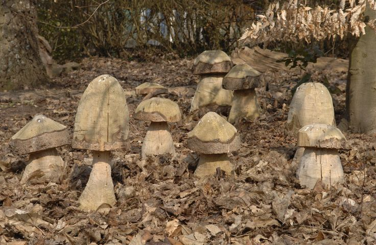 Holzpilze Bauanleitung zum selber bauen   Heimwerker-Forum