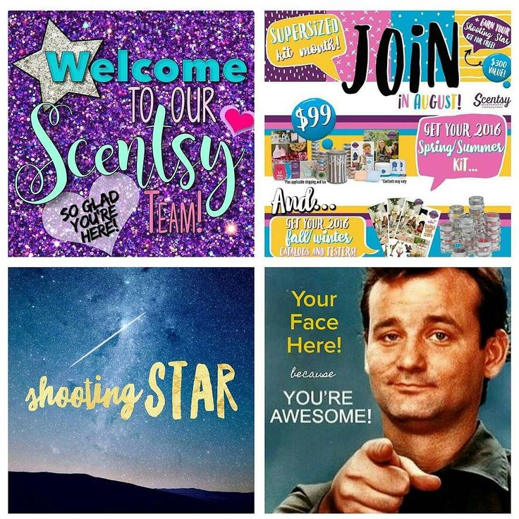 There are only 5 more days to join Scentsy get the bonus starter kit and start earning your Shooting Star (which is over $300 in #FREE Scensty!) What are you waiting for? Do what Bill says!  #sharepositivity #august #specials #billmurray #rocks #yourfacehere