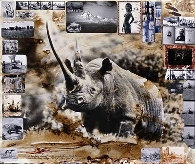 journal and photography by peter beard