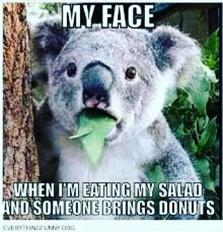 ! Guys it doesnt have to be this way. Treats can (and should!) Be part of a healthy balanced diet. Get in touch to book your free consultation now. #nutritionist #dietadvice #health #weightlossjourney #fatloss #sportsnutrition #dietstartstomorrow #nomorejunkfood #bodybuilding #weightlifting #foodforfuel #girlswholift #slimmingworld #weightwatchers