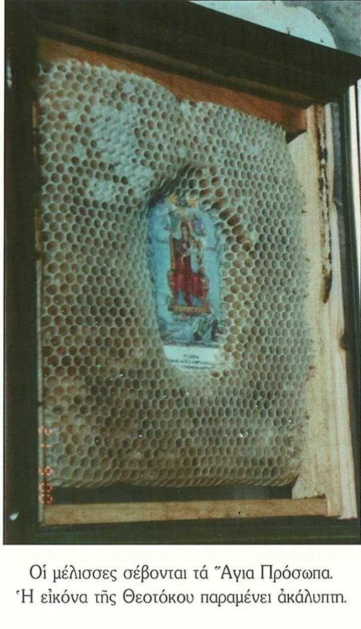 Афонское ЧУДО - пчелы, создавая соты, не касаются  ЛИКА СВЯТЫХ