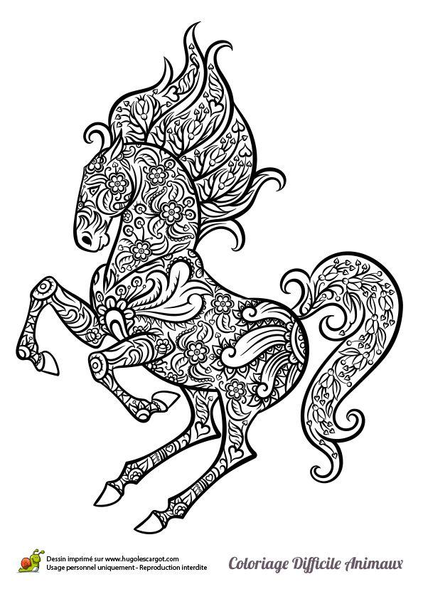 Dessin à colorier d'un cheval cabré - Hugolescargot.com