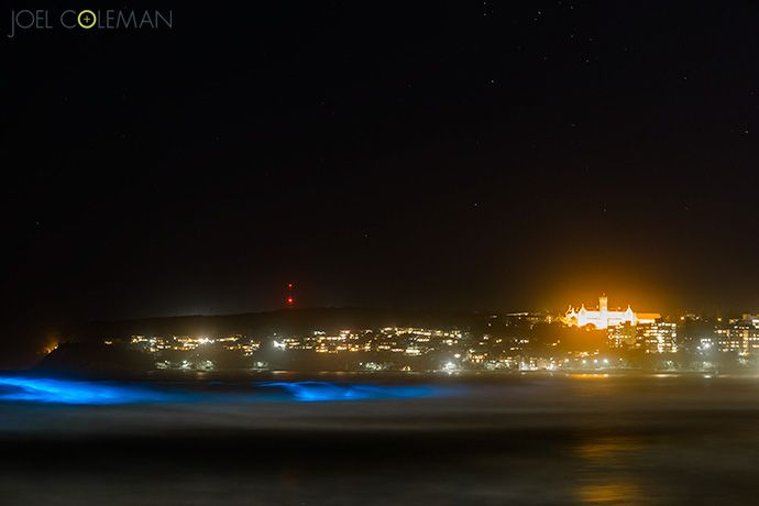 Bioluminescent waves at Manly