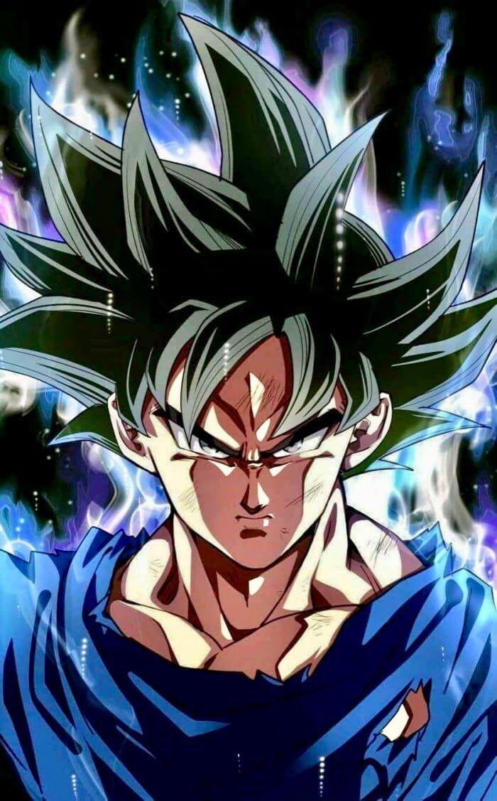 Dragon Ball Super Ultra Instinct Goku Anime Dragon Ball Super Dragon Ball Super Dragon Ball