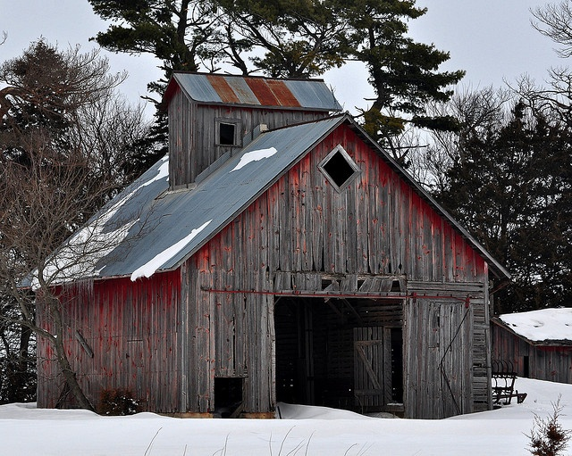 This old granary sits cold, lonely and empty along Hwy 44 in central Iowa. Now just a home for owls, raccoons and an occasional stray cat.