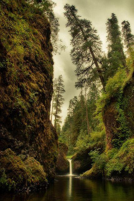 On the Eagle Creek trail, Columbia River Gorge, Oregon