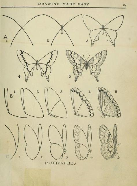 Caterpillar and Butterfly Finger Play Songs | Caterpillar ...