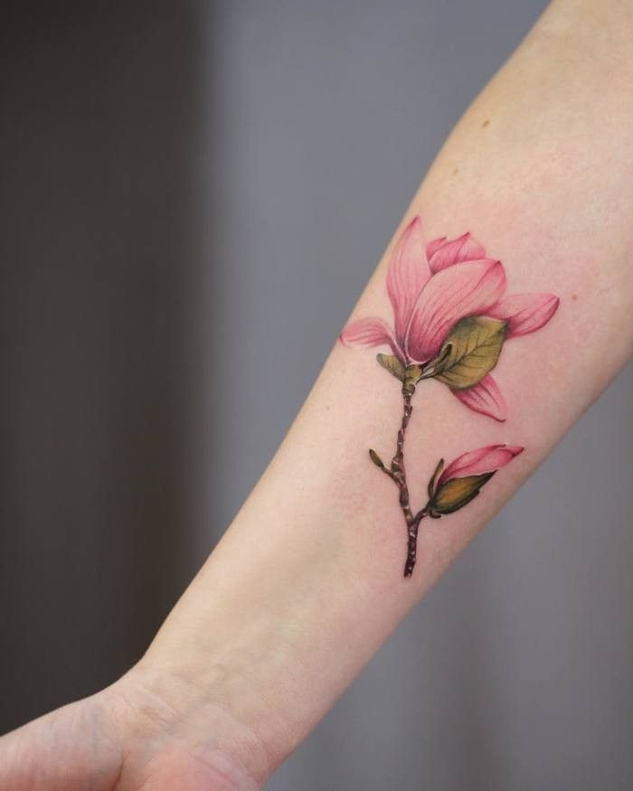 Pin By Kristy Rachal On Cherry Blossom Tattoos Magnolia Tattoo Botanical Tattoo Botanical Tattoo Design