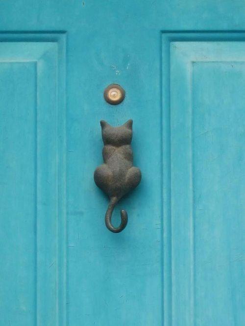 Cat door knocker.