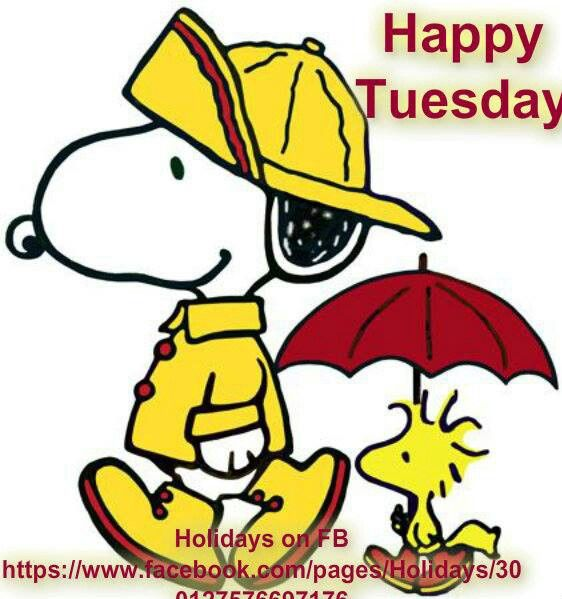 Clip Art Rainy Day Quotes: Best 343 Tuesday Images On Pinterest