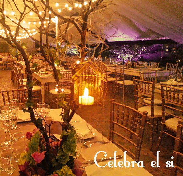M s de 25 ideas bonitas sobre bodas de noche al aire libre for Bodas jardin botanico medellin