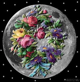 Tarot Girl: May Full Moon - Flower