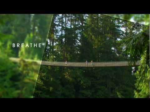 Get a view of Vancouver's rainforests atop the Capilano Suspension Bridge | Roadtrippers - Maps Built for Travelers