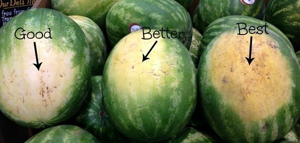 You may think that choosing a great watermelon is up to chance, but there are…