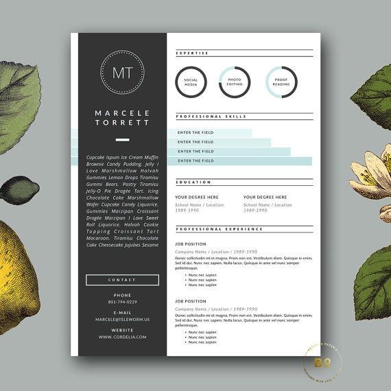 3 Page Resume Template  Professional Resume by BotanicaPaperieShop